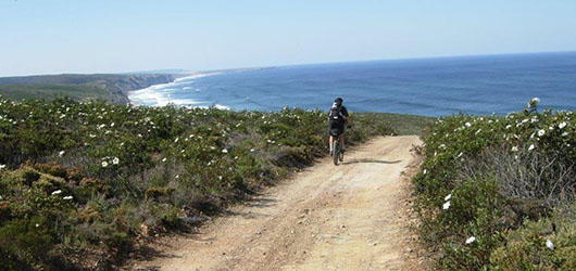 Bike in Portugal - Unique Travels